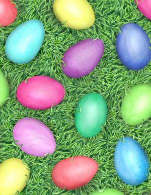 eggs in grass.jpg